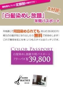 パスポートポスターB2(7)